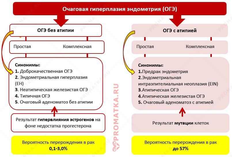Схема форм очаговой гиперплазии эндометрия