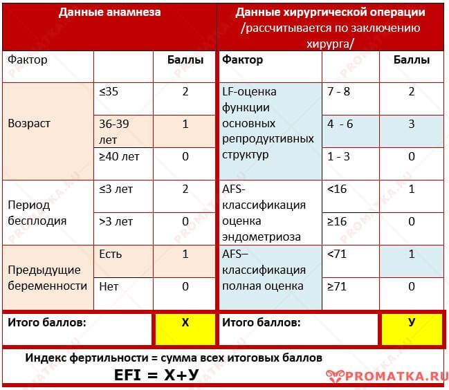 Таблица расчёта EFI