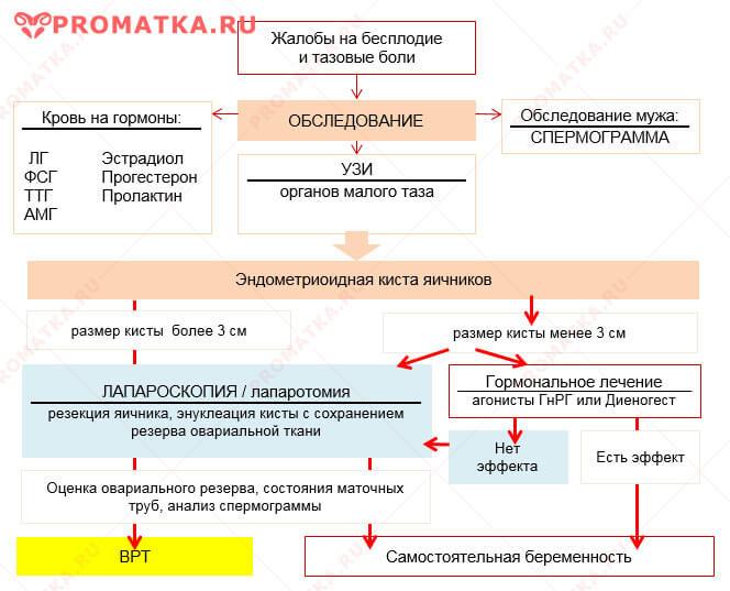 Как забеременеть при эндометриоме яичников – схема