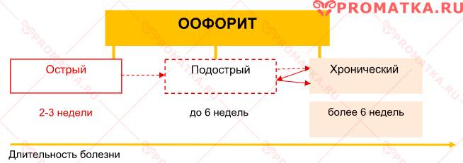 Течение оофорита – схема