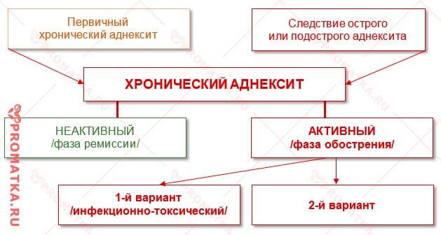 Хронический аднексит - схема