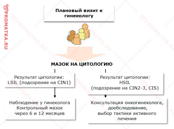 Алгоритм действий при CIN3 - схема